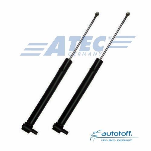 Amortizoare spate Audi TT 8N